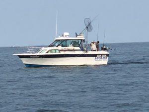 Ace Chartrs II is slipped in Oswego Marina